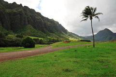 Movie scenes from kahana valley Stock Photos