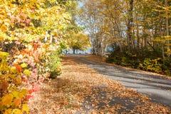 Movimentação cénico do outono imagens de stock