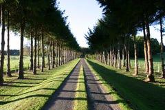 Movimentação rural Imagem de Stock Royalty Free