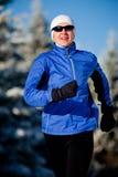 Movimentar-se do inverno Imagem de Stock Royalty Free