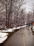 Movimentar-se no inverno Fotos de Stock Royalty Free