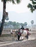 Movimento asiático do vagão dos passeios do homem na estrada secundária Imagem de Stock Royalty Free