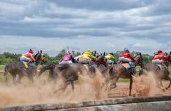 Movimento da corrida de cavalos Foto de Stock