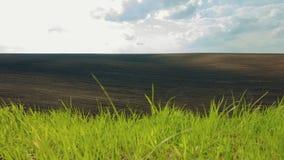 MOVIMENTO DA ZORRA: Campos abaixo arados e verdes do preto vídeos de arquivo