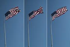 Bandiere degli Stati Uniti Immagini Stock Libere da Diritti