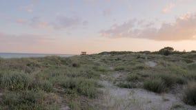 Movimento della macchina fotografica sulle dune di sabbia rivelanti con erba al tramonto video d archivio