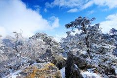 Movimento delle nuvole sulle montagne Kongde Ri, Himalaya, Immagini Stock