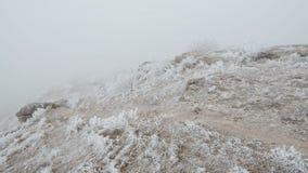 Movimento em uma inclinação de montanha rochoso As rochas e a grama são cobertas com a geada vídeos de arquivo