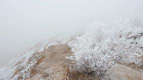 Movimento em uma inclinação de montanha rochoso As rochas e a grama são cobertas com a geada filme