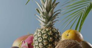 Movimento lento ascendente panorâmico vertical com composição dos frutos exóticos naturais frescos em uma tabela de madeira em um video estoque