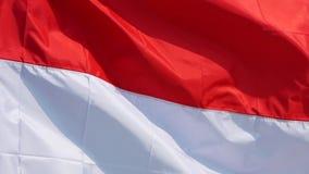 Movimento lento da ondulação da bandeira de Indonésia exterior