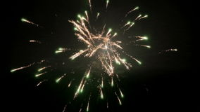 Movimento lento de Champagne Gold Green Fireworks Animated video estoque