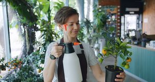 Movimento lento del fiorista che spruzza pianta in vaso esotica con acqua nel negozio di fiore archivi video