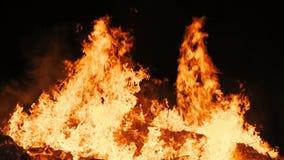Movimento lento della fiamma reale da un fuoco stock footage