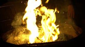 Movimento lento di un fuoco caldo di urlo e dei carboni rossi in un fuoco di accampamento Fiamma luminosa archivi video