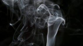 MOVIMENTO LENTO: Fumo fino do cigarro em um fundo preto filme