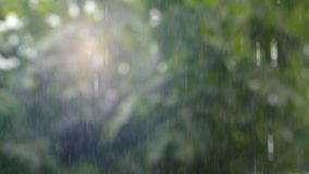 Movimento lento que chove a água deixando cair video estoque