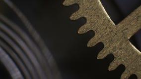 Movimento a orologeria filmato sotto un microscopio archivi video