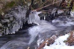 Movimento pequeno do córrego da água no gelo congelado Imagens de Stock Royalty Free