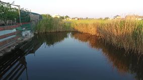 Movimento regolare sopra la superficie dell'acqua di piccolo lago archivi video