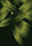 Movimento verde Imagens de Stock