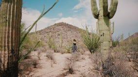 Movimentos da câmera do movimento lento para o gerencio bonito novo da mulher feliz entre o deserto grande do parque nacional do  filme