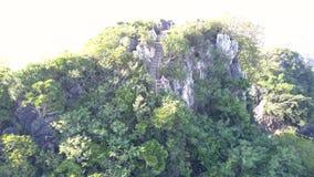 Movimiento aéreo de la muchacha en pasos al panorama general de la colina almacen de video