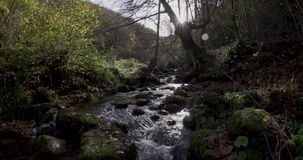 Movimiento ascendente cerca del curso del río hasta una vista general del fondo metrajes