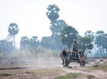Movimiento asiático del carro de los paseos del hombre en la carretera nacional Fotos de archivo