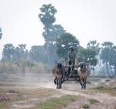 Movimiento asiático del carro de los paseos del hombre en la carretera nacional Foto de archivo libre de regalías