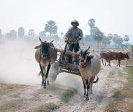 Movimiento asiático del carro de los paseos del hombre en la carretera nacional Fotografía de archivo