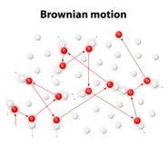 Movimiento browniano o pedesis Imágenes de archivo libres de regalías