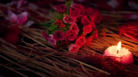 Movimiento de la cantidad de los pétalos de la flor, de la rosa y de la quema de la vela Día de tarjeta del día de San Valentín