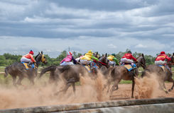 Movimiento de la carrera de caballos Foto de archivo