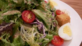 Movimiento de la ensalada del sésamo en la tabla dentro del restaurante metrajes
