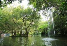 Movimiento de la fuente en el aire y los árboles verdes Foto de archivo libre de regalías