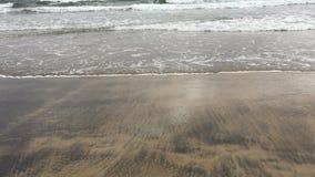 Movimiento de la marea en la orilla de la playa almacen de video