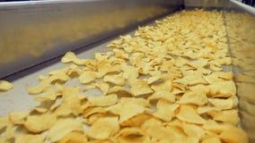 Movimiento de las patatas fritas a través del transportador de la fábrica almacen de video