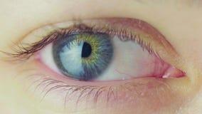Movimiento de los ojos humano de la búsqueda lisa Visión macra metrajes