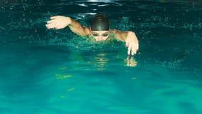 Movimiento de mariposa de la natación del atleta de la mujer en piscina Imagen de archivo
