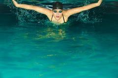Movimiento de mariposa de la natación del atleta de la mujer en piscina Fotografía de archivo
