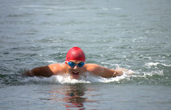Movimiento de mariposa de la natación del hombre Foto de archivo libre de regalías