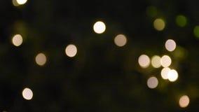 Movimiento del movimiento de Bokeh colorido de lingthing llevado en jardín en la noche almacen de metraje de vídeo