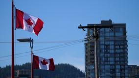 Movimiento del vuelo canadiense de la bandera en astas de bandera en un cielo azul almacen de metraje de vídeo