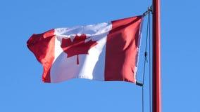 Movimiento del vuelo canadiense de la bandera en astas de bandera en un cielo azul metrajes