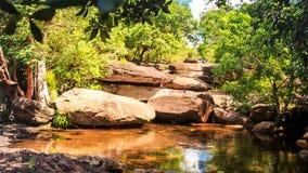 Movimiento a las piedras por la charca en Forest Reflecting Rocks Plants Sky almacen de metraje de vídeo