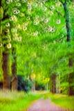 Movimiento ligero Imagen de archivo libre de regalías