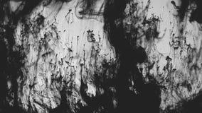 Movimiento que remolina negro de la contaminación de agua del movimiento de la tinta almacen de video