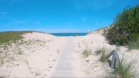 Movimiento sobre Holzweg, duna de la cámara en opinión del mar Báltico, playa-lago de la duna de la hierba almacen de video