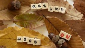Movimientos de la cámara a lo largo del 'humor del otoño en 'frase del texto con las hojas y las bellotas secas almacen de video